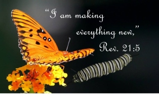 What God's makes new